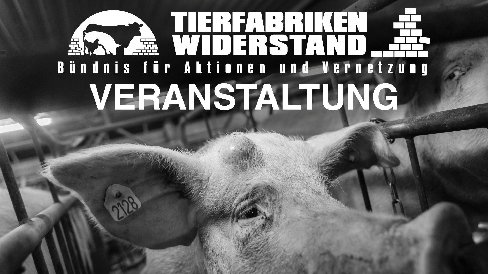 Noch größer, noch mehr?: Diskussions- und Informationsveranstaltung am 25.03. in Forst (Lausitz)
