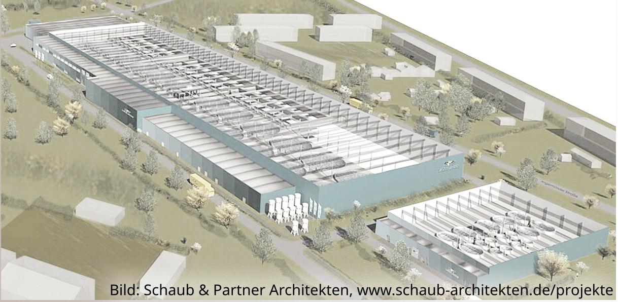 Größte Lachszucht Deutschlands in Eberswalde geplant